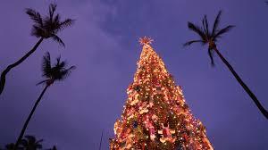 palm tree for christmas christmas lights decoration