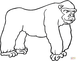 gorilla 7 coloring page free printable coloring pages