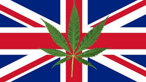 Colorado Flag Marijuana How Legalising Weed Would Save Britain Billions Vice