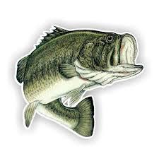 bass fishing decor ebay