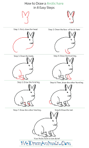 how to draw an arctic hare