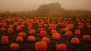 large halloween background halloween eric lahti