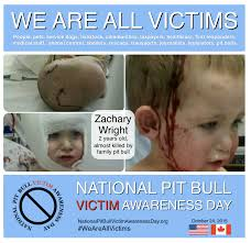 Wendy Wright Meme - victim album national pit bull victim awareness
