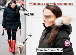 fur company canada goose under siege their turn