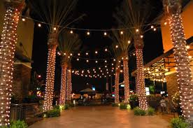 commercial led tree lights led christmas lights light pole banners sign removal bird