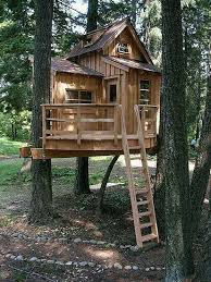 Build A Backyard Fort How To Build A Tree Fort Forts Tree Houses And House