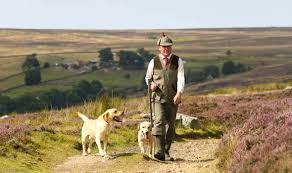 country estate fined after grouse beater is shot and blinded uk
