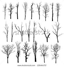 dead tree clipart pine tree pencil and in color dead tree