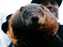 groundhog day is a big party in punxsutawney business insider