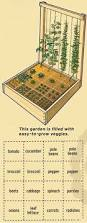 perfect small vegetable garden layout for my 4x4 raised beds i