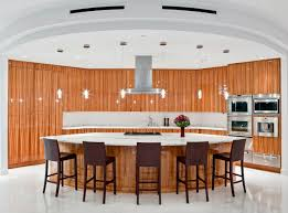 Custom Kitchen Cabinets Seattle Home Design Amazing Seattle Penthouse Big Luxury Modern Kitchen