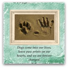 sympathy for loss of dog pet sympathy card messages