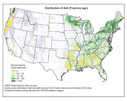 emerald ash borer map catskillmountaineer com forum view topic emerald ash borer is