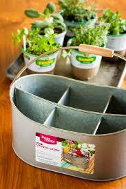 easy indoor herb garden simple 10 minute diy project indoor