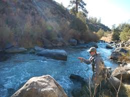 Publiclands Org Washington by Everything You Need To Know About Public Lands Transfer New