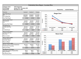 liquidity report template 1 professional and high quality