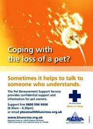 pet bereavement pet bereavement support