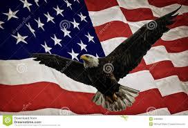Bald Eagle On Flag Bald Eagle And Flag Stock Photo Image Of Aged Flying 46568882