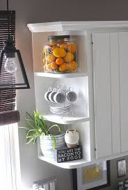 kitchen corner shelves ideas awesome decorating ideas for kitchen shelves photos interior cool