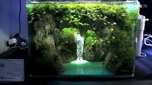 Wohnzimmertisch Aquarium The Art Of The Planted Aquarium 2017 Nano Tanks 1 3 Planted