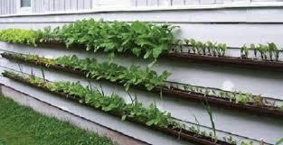 stunning small garden design ideas on a budget ideas