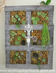 Vertical Gardening by Anythingology Vertical Gardening The Experiment