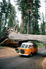 volkswagen hippie van name 2801 best vw vans images on pinterest vw vans car and cars