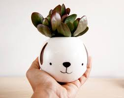 animal planter cat ceramic plant pot face planter succulent planter ceramic