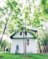 Design A Cabin by Looking For A Wedding Venue