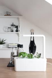 decordots in my kitchen a smart herb garden