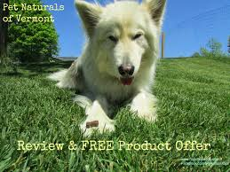 american eskimo dog rescue indiana my rotten dogs may 2014