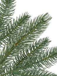 fraser fir artificial narrow tree from balsam hill