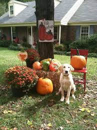 fall outdoor decorations outdoor fall decorations simple landscaping backyards ideas