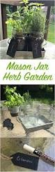 17 best images about gardening ideas on pinterest seed starting