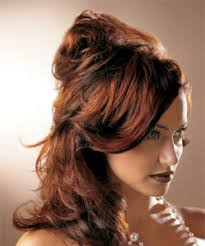 Types Of Hair Colour by Choosing Hair Color Products Or Services At Salon