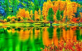 nature lake reflections wallpapers forces of nature reflection landscape green splendor autumn tree