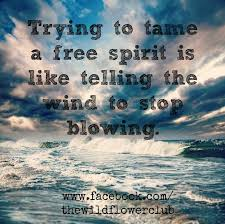 free spirit quotes search feels spirit