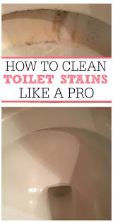 best 25 toilet bowl stains ideas on pinterest clean toilet
