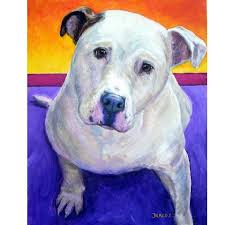 american pitbull terrier yavru 55 best american bulldogs and more images on pinterest