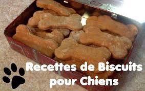 cuisiner pour chien recette de biscuits pour chien au pâté de foie