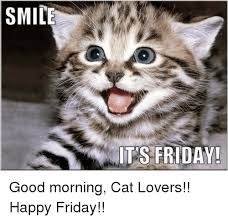 Good Morning Cat Meme - smile its friday good morning cat lovers happy friday it s