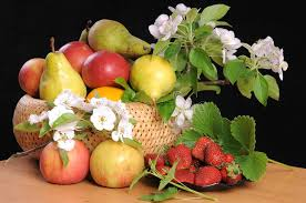 fruit and flowers fruit and flowers stock image image of flowering sheet 19715931