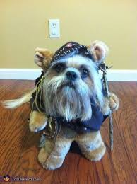 Small Dog Costumes Halloween 25 Ewok Dog Costume Ideas Small Dog Costumes