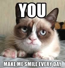 You Make Me Smile Meme - you make me smile every day happy grumpy cat is happy meme generator