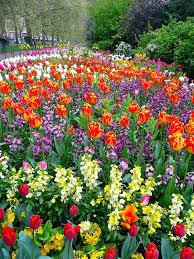 579 best gardens of the world images on pinterest botanical