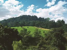 Kentucky scenery images Free photo landscape kentucky scenic nature scenery outdoor max jpg