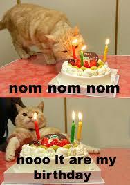Meme Birthday Cake - cat birthday cake meme birthday best of the funny meme