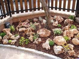 giardini rocciosi in ombra aiuole per giardino foto di aiuole e piccoli giardini