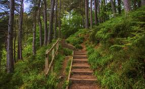 Pics Of Foyers Stairway To Heaven Falls Of Foyers Scotland By Raiden316 On