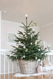 27 best natural christmas trees images on pinterest christmas